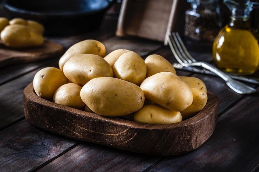 Origin and history of the potato