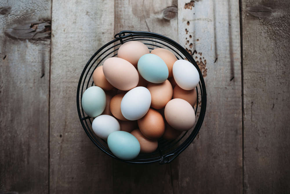 What gives eggs their color?